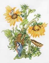 September Flowers and Wren by Luca-S - B7004